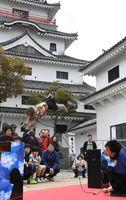 唐津城の来場者の前で「八艘飛び」の妙技を披露する猿のサスケ=唐津市東城内