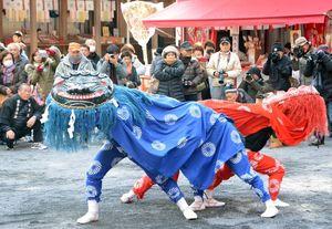 境内で奉納された大村方獅子舞=鹿島市の祐徳稲荷神社