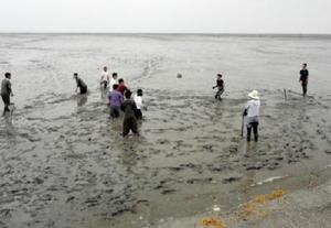 太良といえば有明海! 干潟で泥だらけになりながら、球技を楽しむ生徒たち