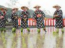 巫女ら豊作祈り 祐徳稲荷神社で「お田植え祭」