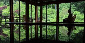 新緑を輝かせるモミジ。画面下の漆塗りのテーブルには、鏡のように景色が映り込む=唐津市厳木町の環境芸術の森