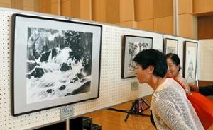 平安寺扶さんの水墨画を鑑賞する来場者=小城市の「ゆめぷらっと小城」