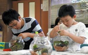 水草を水槽に入れる子どもたち=佐賀市のエコプラザ