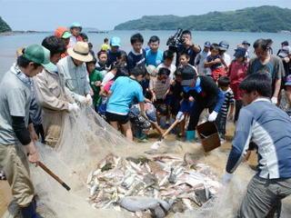 第12回 地引き網体験(唐津市肥前町) 豊かな海の恵み感じて