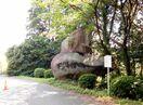 <きやぶ今昔>舟石権現 山中に残る謎の巨石