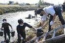 【動画】伝統農法「ごみくい」、200人がクリークの泥上げ…