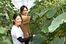 <農に夢のせて>②原田諭さん・理香さん 栽培、夫婦で楽し…