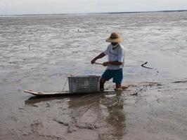 有明海の広大な干潟でワラスボを掻く久野官一さん