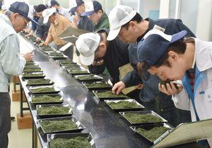 新茶の香りや感触などを確認する担当者=嬉野市の西九州茶農業協同組合連合会