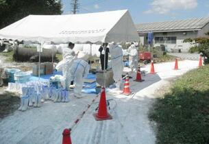 2県の豚コレラ、殺処分が完了