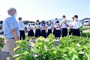 髙平増夫神埼和桑部会長(左)の説明を聞く中学生=神埼市神埼町
