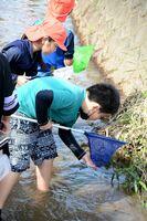 学校近くの北目川に入って水生生物を採取する久間小の4年生たち=嬉野市塩田町