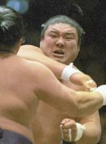 大相撲の元関脇麒麟児が死去