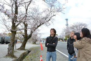 見ごろを迎えた桜に見入る家族連れ=吉野ヶ里町の陸上自衛隊目達原駐屯地