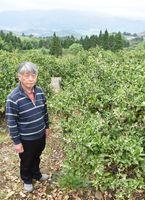 天山(奥)を望む山あいで、4年前からミカン園を経営する森正行さん=多久市南多久町長尾
