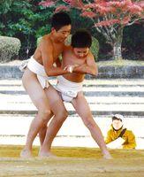 熱戦が繰り広げられた石場相撲大会=有田町の白磁ケ丘相撲場
