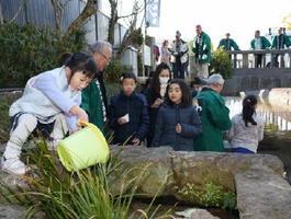 ゲンジボタルの幼虫を放流する参加者=佐賀市城内の多布施川