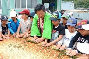 釜で炒った茶葉を手でもむ作業を体験する嬉野小3年の子どもたち=嬉野市の茶業研修施設「嬉茶楽館」