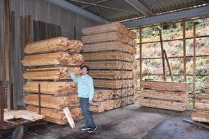 積み重なった木材を前に、輸出の可能性を話す杉山利則組合長=佐賀市富士町の小中径木加工場