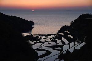 夕日に染まる「浜野浦の棚田」。水田と海岸が織り成す光景が人々を魅了する=東松浦郡玄海町(4月23日撮影)
