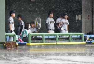 雨の中、ベンチで待機する唐津南の選手たち。この後、順延が決まった=10日午前、佐賀市のさがみどりの森球場