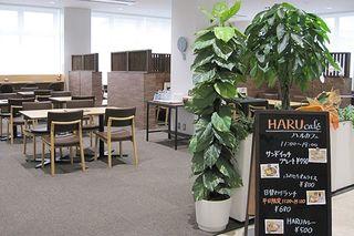 Museum Kitchen HARU café