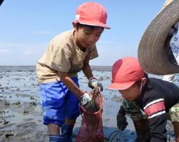 夢中になって生き物を見つける子どもたち=佐賀市川副町沖の有明海