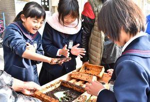 手すきノリ作り体験で手形をつける子どもたち=佐賀市の大詫間小学校