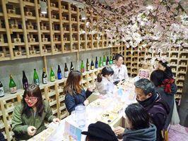 桜の木の下で佐賀の地酒を楽しむサクラチルバー=東京・表参道のZeroBase表参道