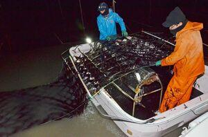 ライトを照らし、手際よく冷凍網ノリを摘み取る漁業者=13日午後7時すぎ、佐賀市久保田町沖の有明海