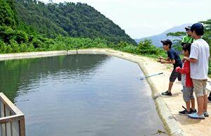 強い引きを楽しめるニジマス釣り場。家族で訪れた初心者の子どもたちも=唐津市厳木町平之のフィッシングパークひらの