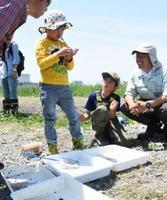 水田地帯から採集した生物を調査する参加者ら=佐賀市大和町