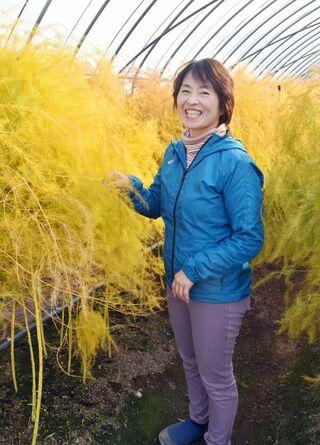 <未来を拓く(3)>基山町のアスパラ農家・増永和子さん(53)