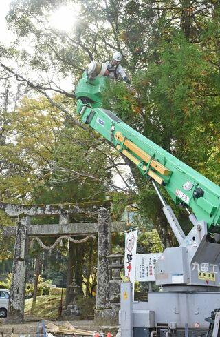 【動画】多久神社の樹木の枝を伐採 九電工が社会貢献活動