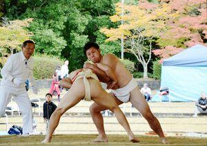 熱戦を展開した一般の部の選手たち=有田町の白磁ケ丘相撲場