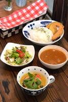 スパイスチキン&野菜グリーンカレー ハーフ&ハーフ 850円 カレー2種、サラダ、ご飯、野菜フライ