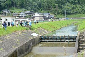 可動堰と脇に設けられた魚道を確認する児童たち=嬉野市塩田町の八幡川