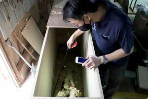 カブトムシの幼虫を見つけて育ててきた野口浩平さん=佐賀市諸富町のレグナテック