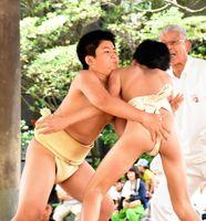 つり出しで優勝を決めた西山瑛太君(左)=佐賀市の佐賀県総合体育館