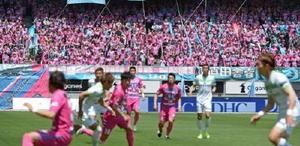 ベストアメニティスタジアムがピンク一色に染まったレディースデー=5月4日