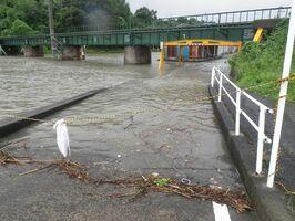 満潮と河川の増水が重なり通行できなくなった国道沿いのアンダーパス=太良町伊福、2012年(町提供)