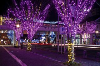 SAGA百景 イルミネーション灯る冬の伊万里