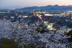 千葉城跡に整備された千葉公園。須賀神社の本殿から東側に少し登った位置にあり、展望台からは眼下に桜が広がる。夕暮れ時、桜越しに市街地の明かりがともり始めた=26日、小城市小城町(撮影・米倉義房)