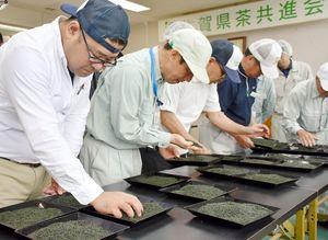 茶葉の色や形を調べる審査員=嬉野市の茶業試験場
