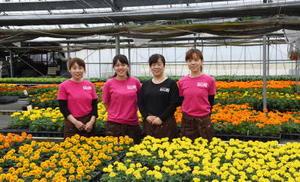 市丸香代子さん、谷口未佳さん、市丸初美さん、飯塚智美さん(左から)=伊万里市の「百姓屋」栽培ハウス