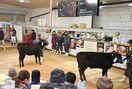 <ワイドスコープ>安価な肉に佐賀県内畜産懸念 日米貿易協…