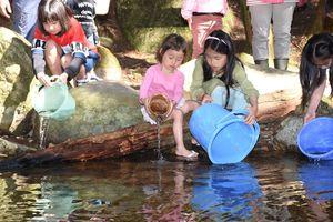 ヤマメの稚魚を放流する子どもたち=鳥栖市牛原町の河内川