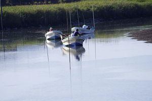 鹿島川河口から約1キロ地点で3隻が並んで釣り糸を垂れる