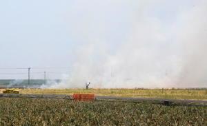 2016年産の焼却率は過去最低になったが、手間が省けるなどの理由で野焼きを続ける農家もおり、下げ止まりも懸念されている=16年5月、県内