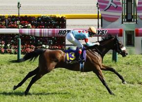 競馬、アーモンドアイが牝馬2冠
